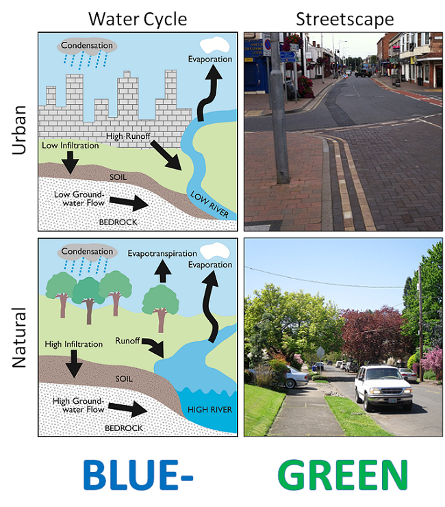 Comparison of hydrologic (water cycle) and environmental (streetscape) attributes in conventional (upper) and Blue-Green Cities
